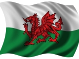 Wales and the ECWC: The 1990s, a decade of decline