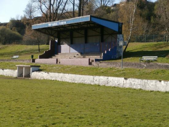 The main (and only) stand in Dinas Park.