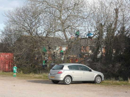 It seems those pesky 10-year-olds live in the trees in the car park!